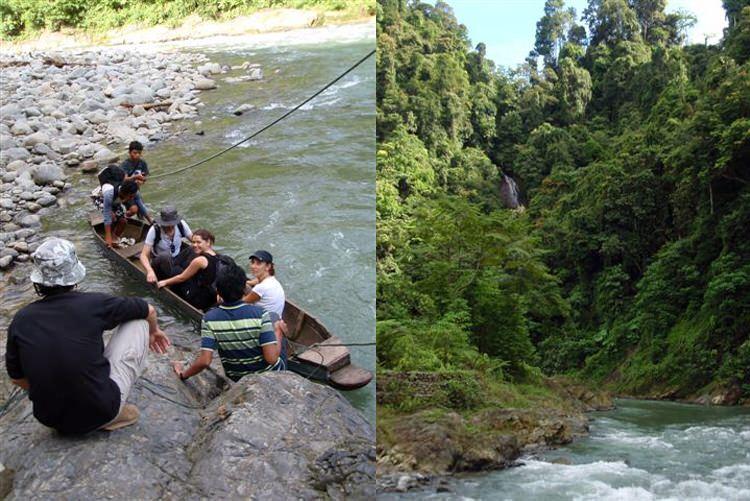 Bukit Lawang, la rivière