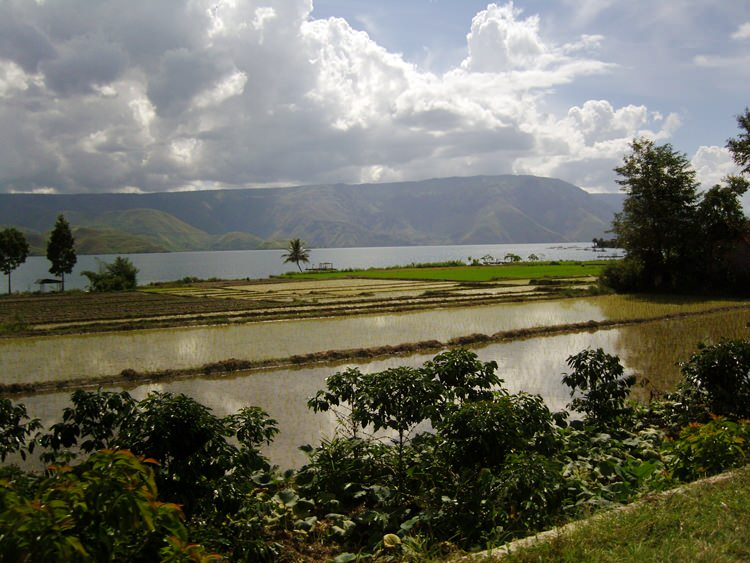 Lac Toba, Samosir
