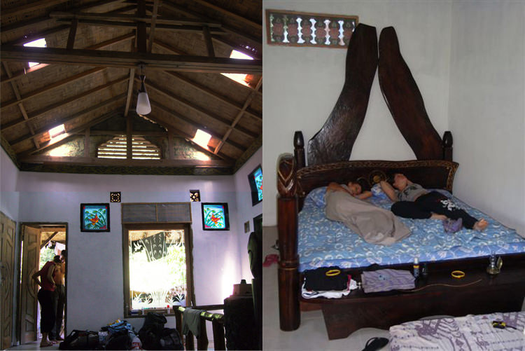 Jungle Inn, la chambre