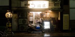 Les 7 plats exotiques du Shinji-ko