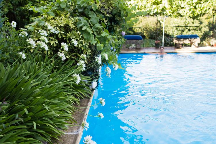 Casa das Obras, la piscine