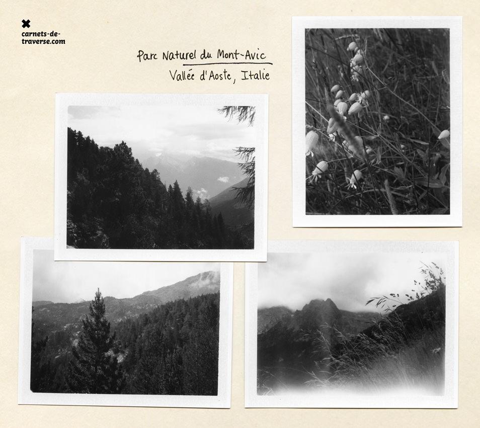 Polaroid 667, parc du Mont-Avic