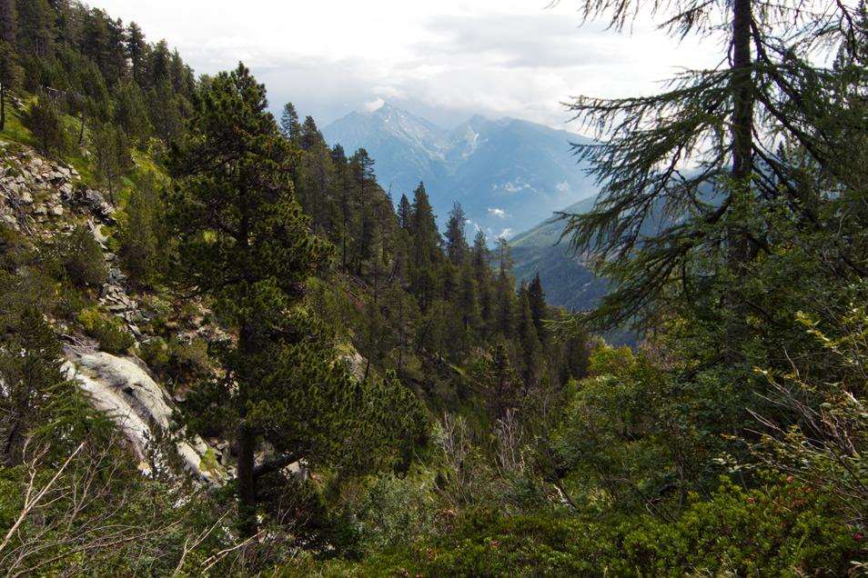 Parc naturel du Mont-Avic
