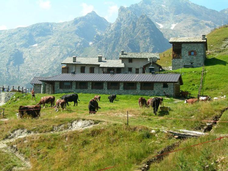 """Agritourismo La Maison du Lord"""", Champdepraz"""