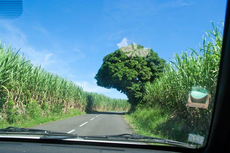 Location de voiture bon marché à La Réunion