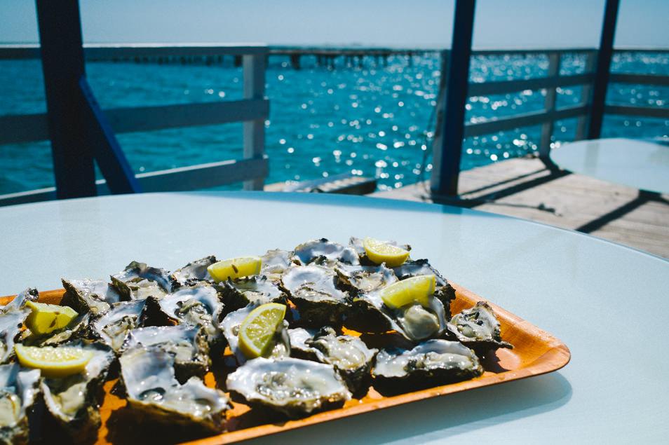 Parc à huîtres, Catalogne