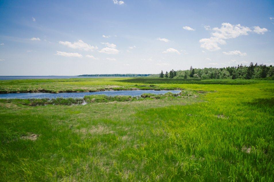 Parc national de Kouchibouguac, road trip en Acadie, Nouveau Brunswick