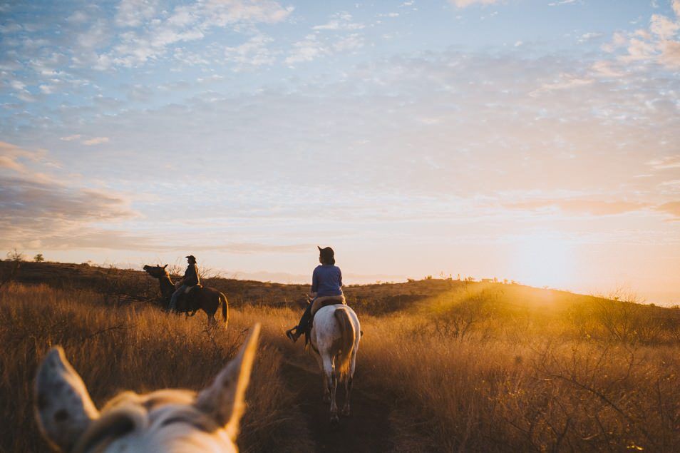Balade à cheval à La Réunion