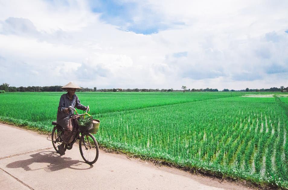 Sur les routes de Thailande, l'Isan