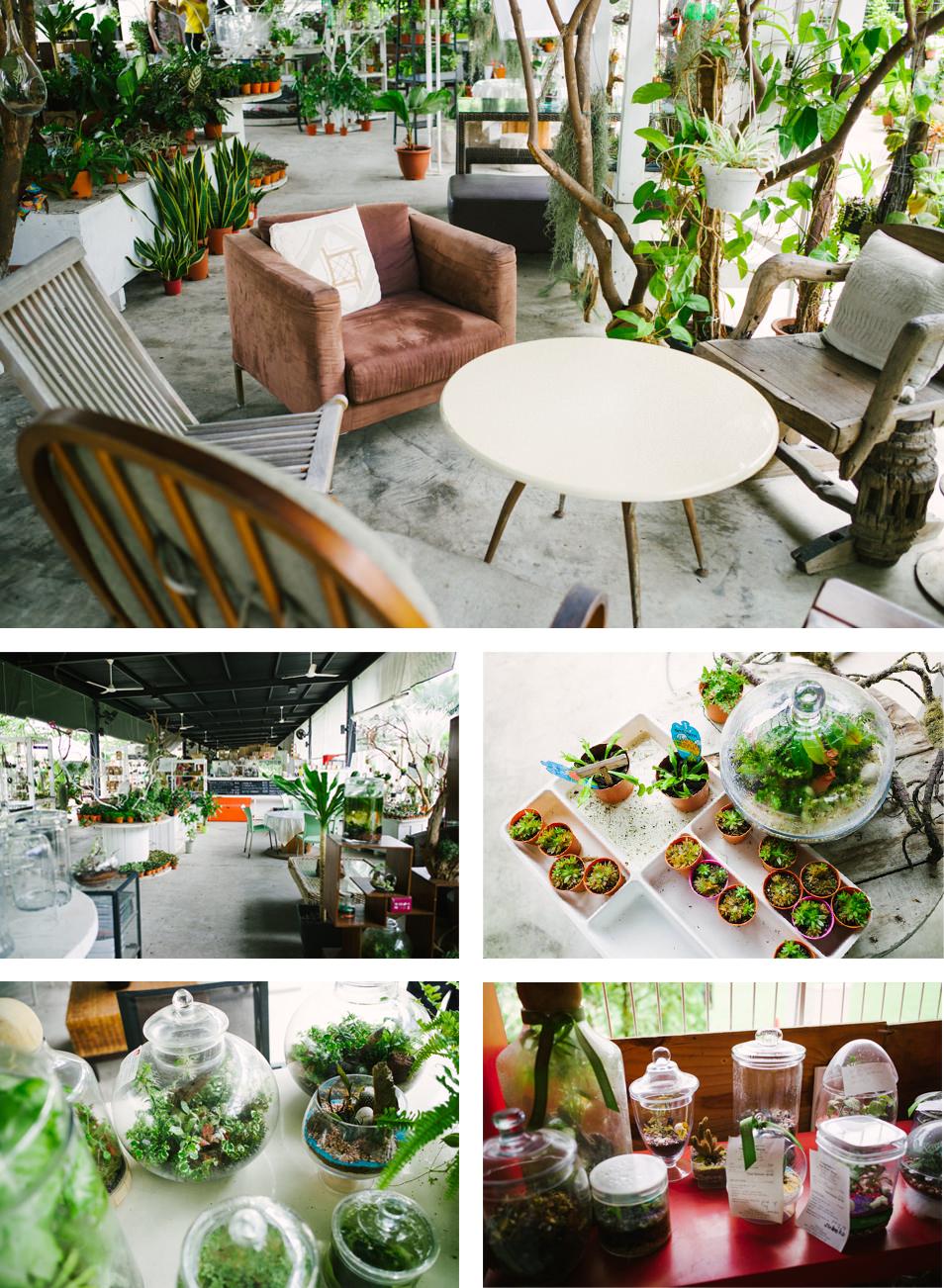 Visiter Singapour - Café Plant Story