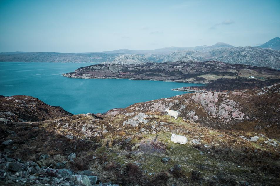 Road trip dans les Highlands d'Écosse, la Péninsule d'Applecross