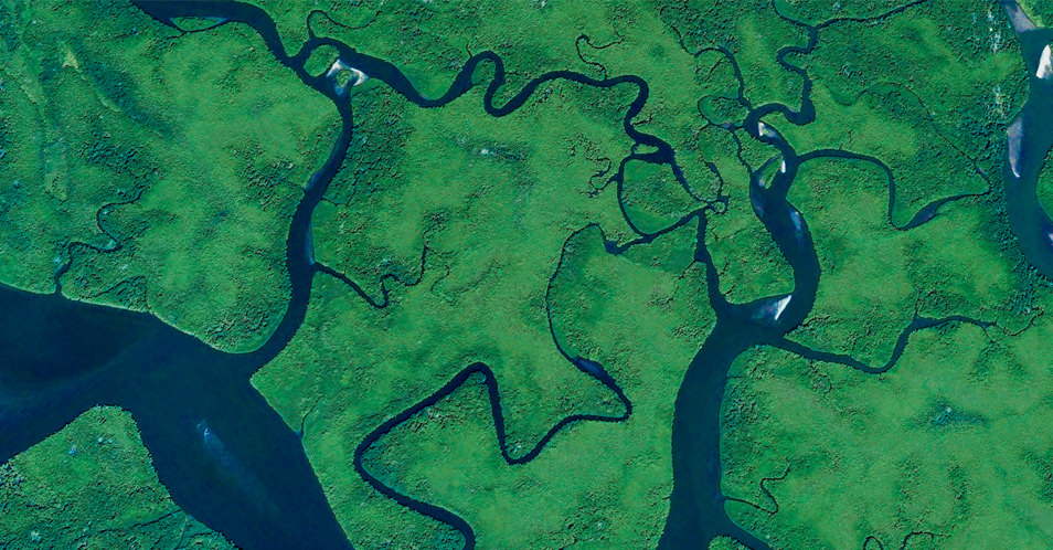 Google Earth - Mangrove, Panama