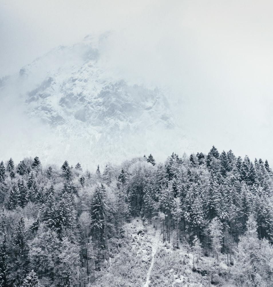 Montagnes du Tyrol, Autriche