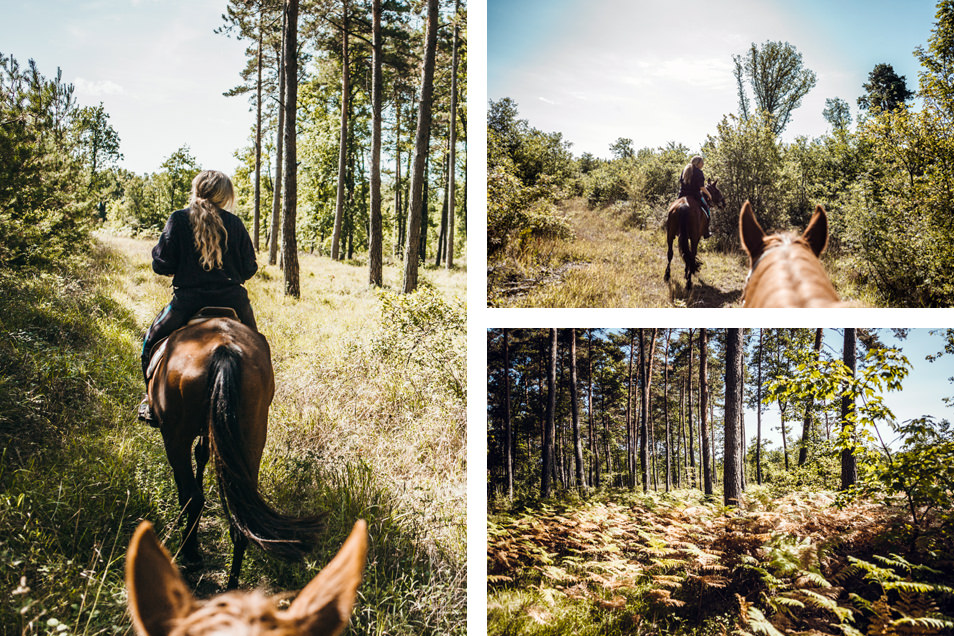 Rando à cheval dans la vallée de la Creuse