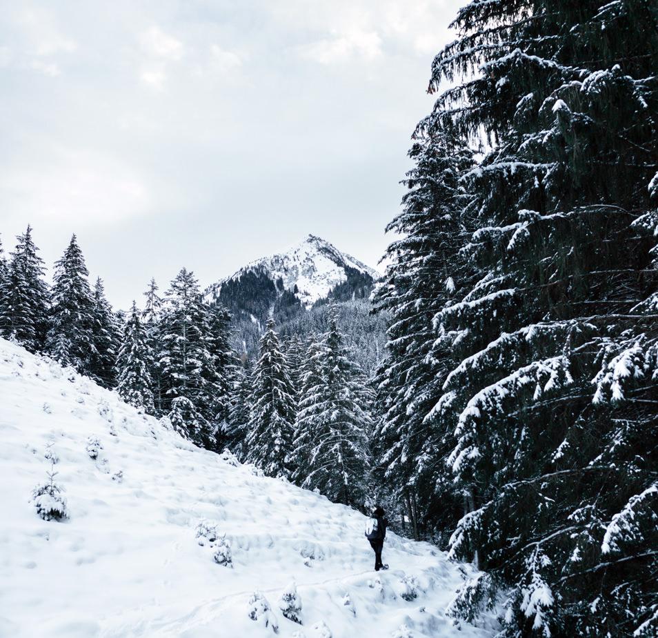 Tyrol - Une rando en raquettes
