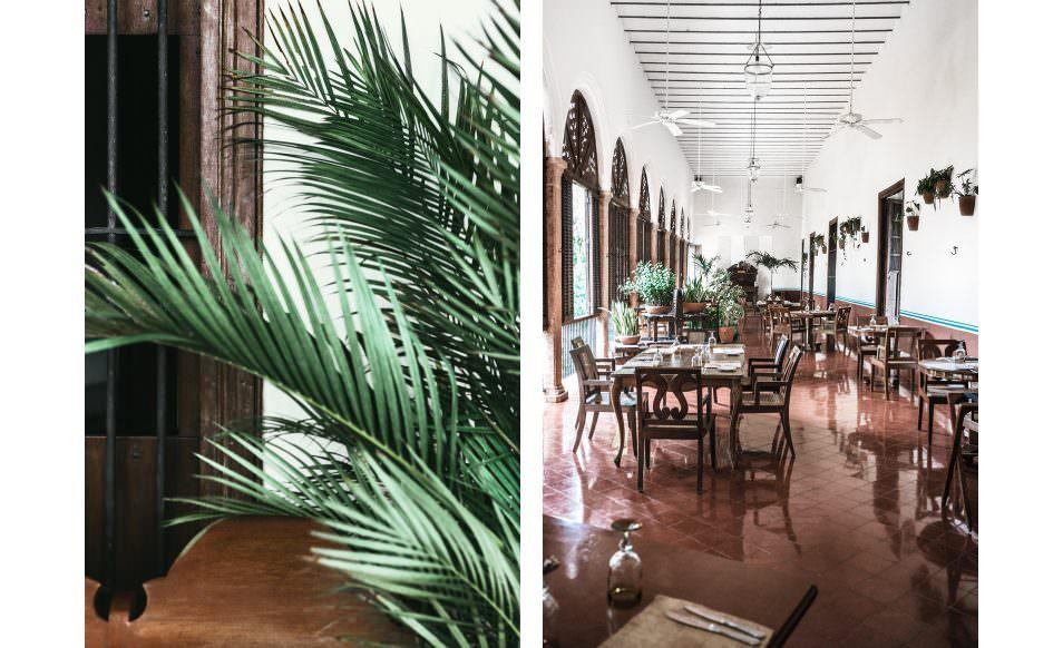 Hacienda Temozon - Yucatan, Mexique