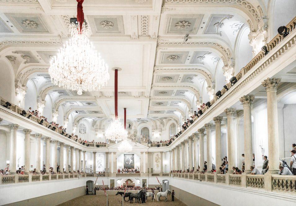 Visiter Vienne : l'Ecole espagnole d'equitation