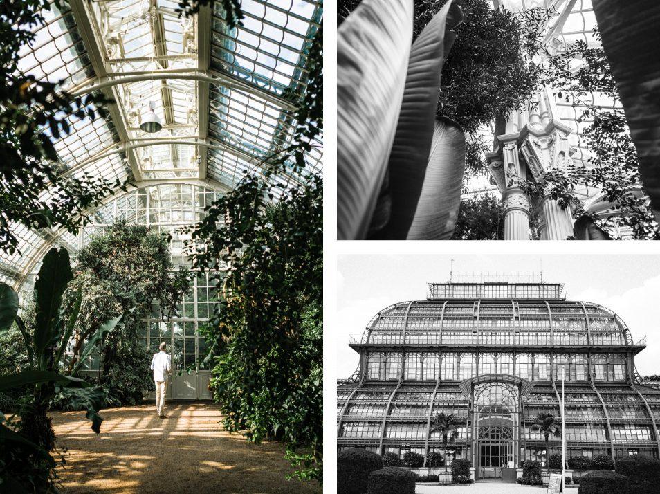 Visiter Vienne : la serre aux palmiers de Schonbrunn