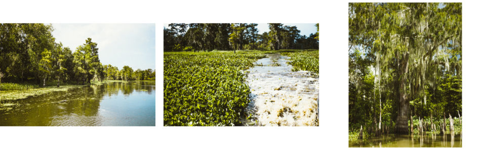 Blog Voyage Itinéraires Road Trip Etats-Unis USA Louisiane Beaumont La Nouvelle Orleans