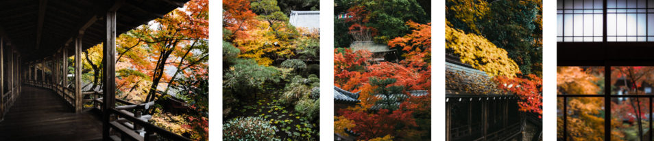 Visiter Kyoto Guide Complet 4 ou 6 jours